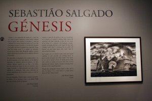 """Génesis"" de Sebastião Salgado. Crónica de la exposición"